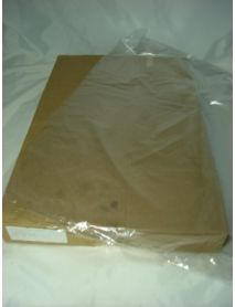 20 x 30 Clear Poly Bag  (100g)